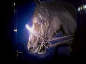 cheval sur van